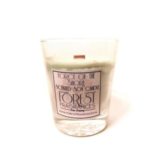 forest fragrances - home fragrances - candle - force of the shore - single