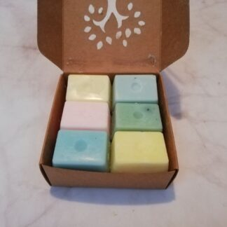 forest fragrances - home fragrances - waxmelts - waxmelts set winter