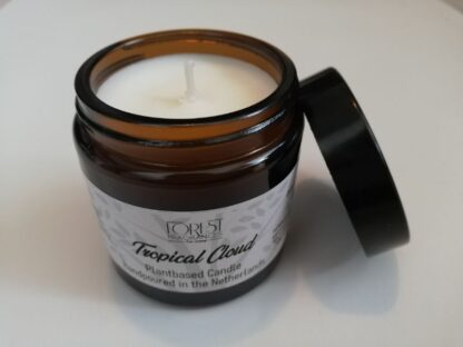 forest fragrances - home fragrances - geurkaars - kokos