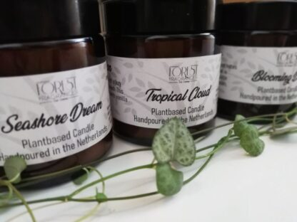 forest fragrances - home fragrances - seasonal collection - lente zomer