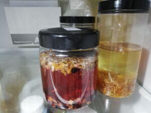 forest fragrances - blog - natuurlijke kruidenspoeling - koelkast